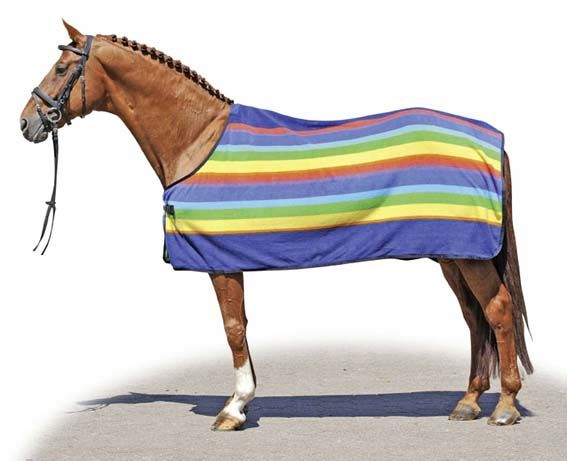 HKM Rainbow Anti-Sweat Horse/Pony Rug.... stand out from the crowd this season.. #LofthouseEquestrian #rugs #horses
