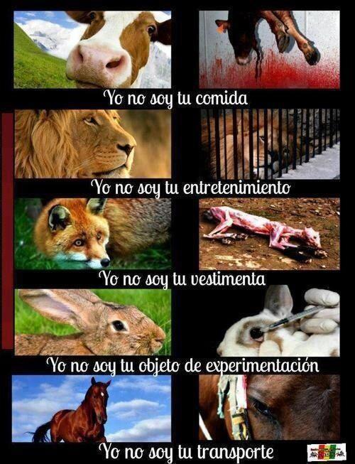 Cosificación de los animales.