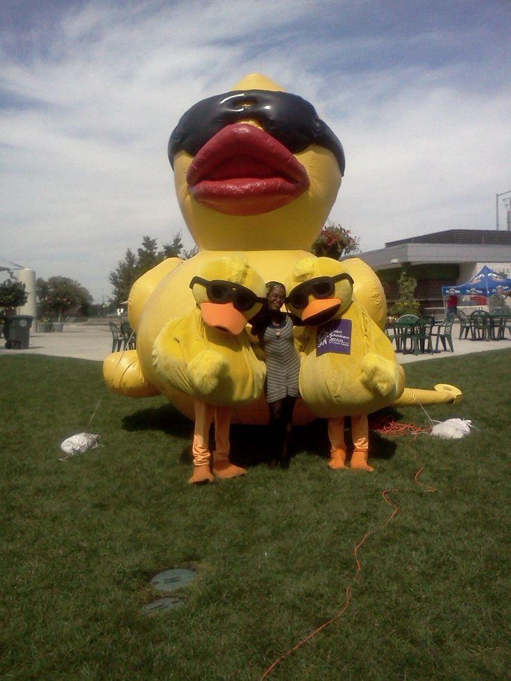 67 best Ducks in sunglasses images on Pinterest | Ducks ... | 736 x 981 jpeg 96kB