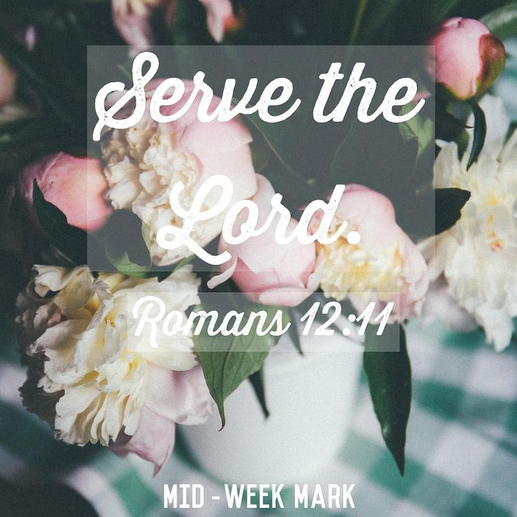 """{Mid-Week Mark} """"Serve the Lord"""" Romans12:11  Hidden motives are the worst! You do something nice for someone thinking all along you're doing it unto the Lord and then BOOM, it's revealed in your heart that you were actually doing it for praise. The truth comes out that you weren't serving God, you were serving self. --------------------------------------------- Self image. Self acceptance. Whatever it is- we are so prone to serving our own fleshly desires.{Click to continue reading}"""
