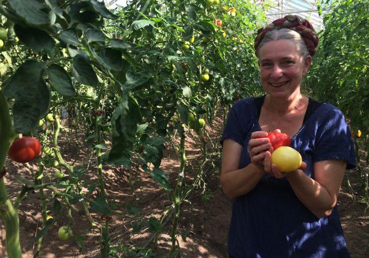 6 smarta trädgårdsknep från Mandelmanns gård
