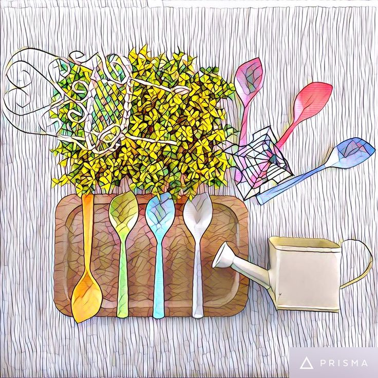 The Special Shape Cutlery. What a Colorful Tableware.