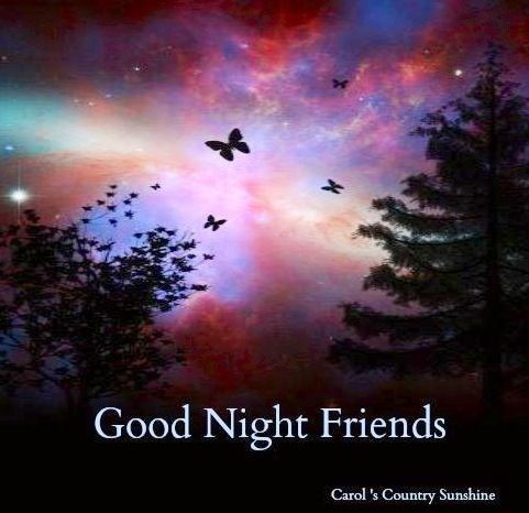 Good night via Carol's Country Sunshine on Facebook