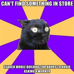 Anxiety Cat - Can't find something in store search whole building for hours to avoid asking a worker