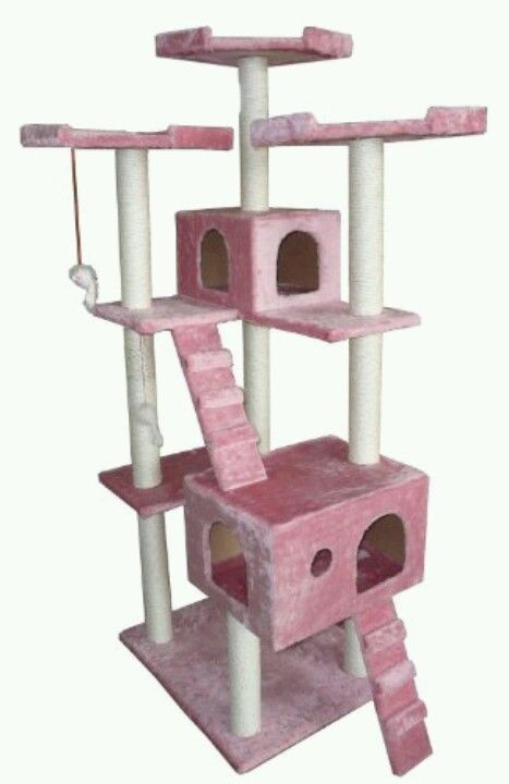 Cat house I have this my babies love it