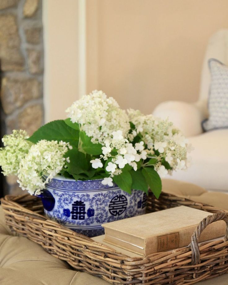 "236 Likes, 8 Comments - JennySteffensHobick (@jennysteffenshobick) on Instagram: ""Hydrangea season is my favorite.  Maybe it is because we have nearly 20 bushes in our yard so I…"""