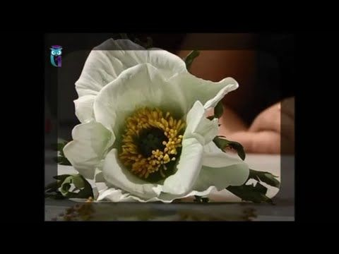 Make the flower of the white poppy of foamiran (spongy rubber). Diy. Han...
