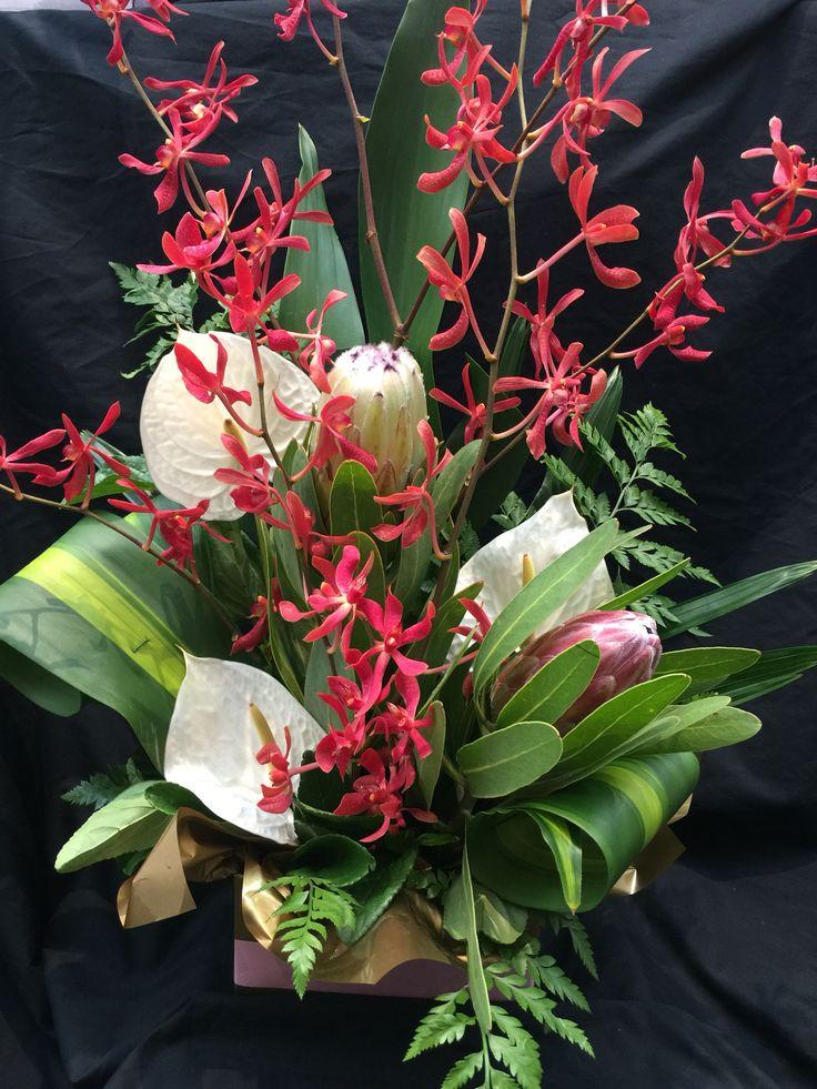 Protea, orchids & Anthurium box arrangement