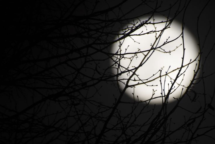 Full Moon In Gemini, December 3rd, 2017