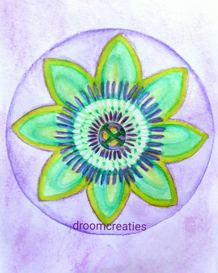Passionflower mandala aquarel painting    #passionflower #flowermandala #mandala #mandalasharing #aquarelpainting #aquarelart #aquarel #watercolour #drawing #passiebloem #droomcreaties