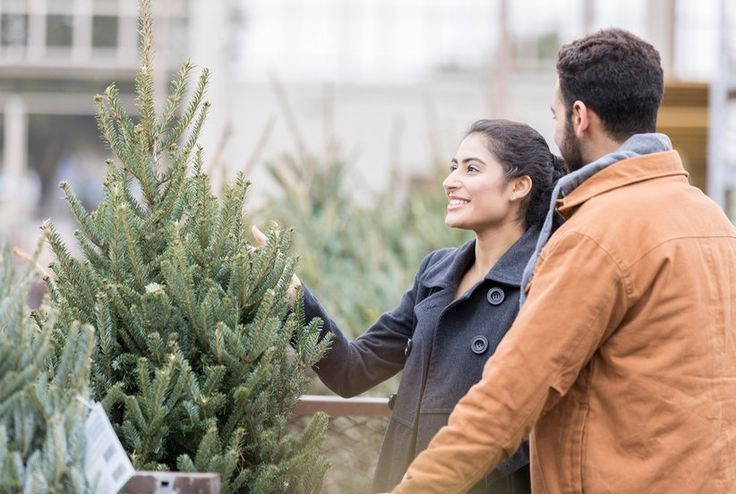 The Worst Time of Year to Buy a Christmas Tree—and When to ...