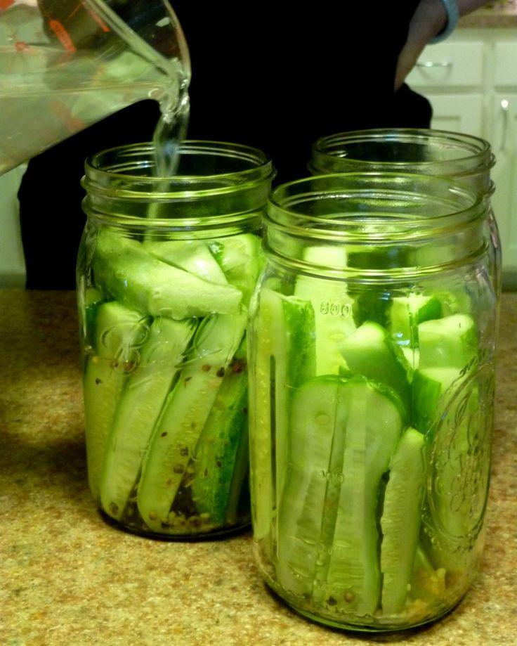 Refrigerator Pickles. For single serve, 3/4 tsp black peppercorns, 1 tsp dill, 1 1/2 tsp minced garlic,   1 1/2 Tbsp salt, 1 Tbsp sugar, 1/2 c + vinegar, 2 c cold water