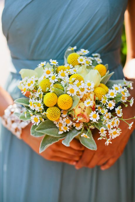 A bridesmaid bouquet with chamomile & craspedia. Would tie in well with the button holes too?