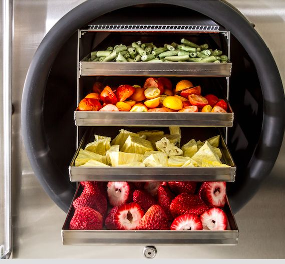 Our Freeze Dryer Enables You To Freeze Dry Different Foods