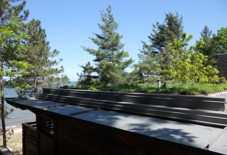 Why You Should Get A Rooftop Garden Today Rooftop Garden Rooftop Green Roof Technology