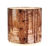 BK shady tree table forest