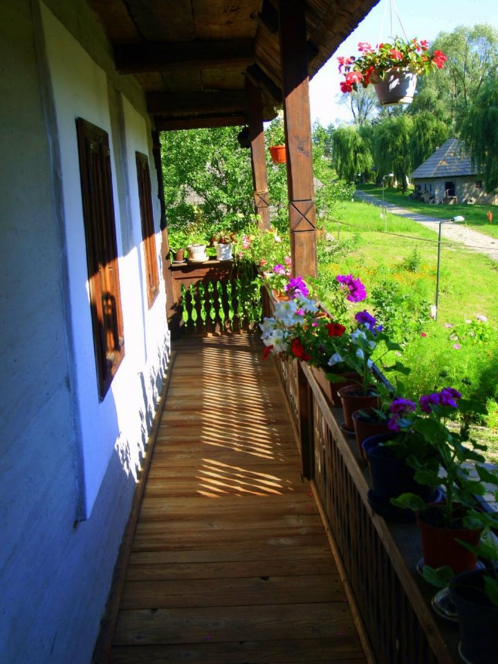 What about having a vacation into a last truly bucolic country in Europe, Romania. Viilage house terrace and courtyard. www.romaniasfriends.com/Tours