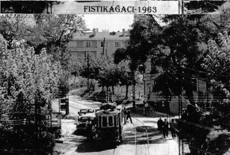 Fıstıkağacı 1963 yılı
