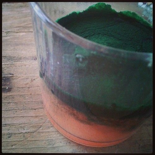 Spirulina mixed with fresh grapefruit juice. Looks like out of space :)…