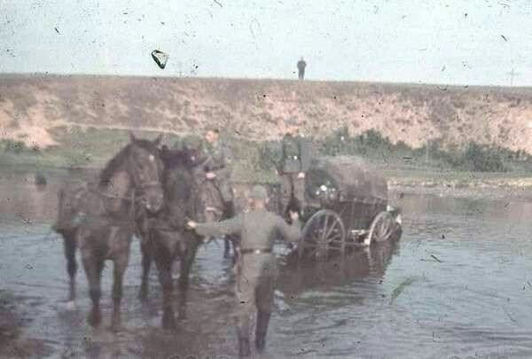 German horse transport crossing river, eastern front WW2, pin by Paolo Marzioli