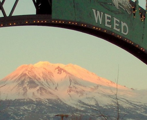Weed California. WWOOOAAH I know where this is haha.... not as great as it sounds