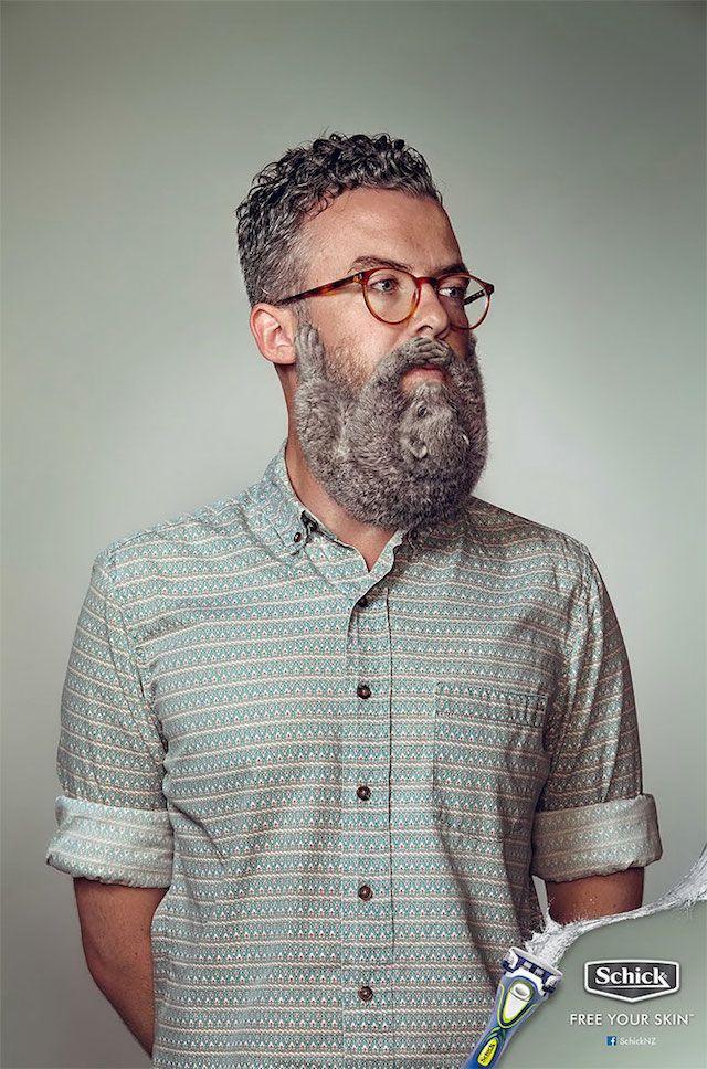 La marque de rasoir Schick a fait une campagne d'affiches très drôles montrant des hommes barbus venus de Nouvelle-Zélande dont la barbe est faite avec des rongeurs très poilus agrippés à leurs mentons.