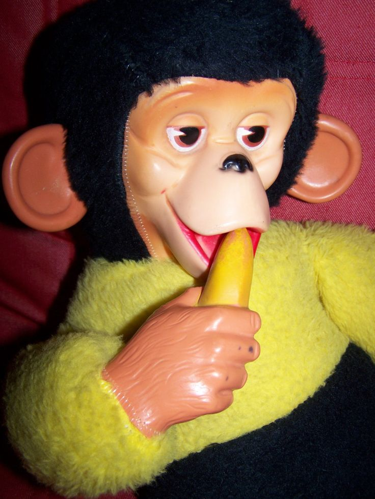 The 25 best ugly monkey ideas on pinterest unique for Tattoo grand rapids mn