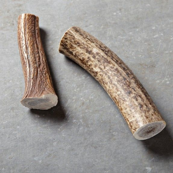 Elk Antler Dog Chew Toy