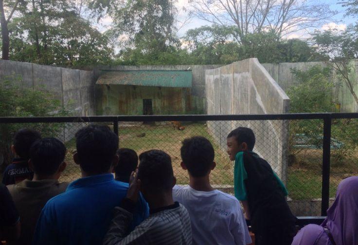Membludak, Kebun Binatang Medan Dijaga Polisi Hingga TNI