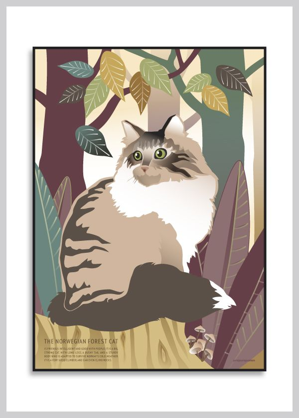 Katteplakat: Norsk skovkat fra Ping Pong Posters – køb her!