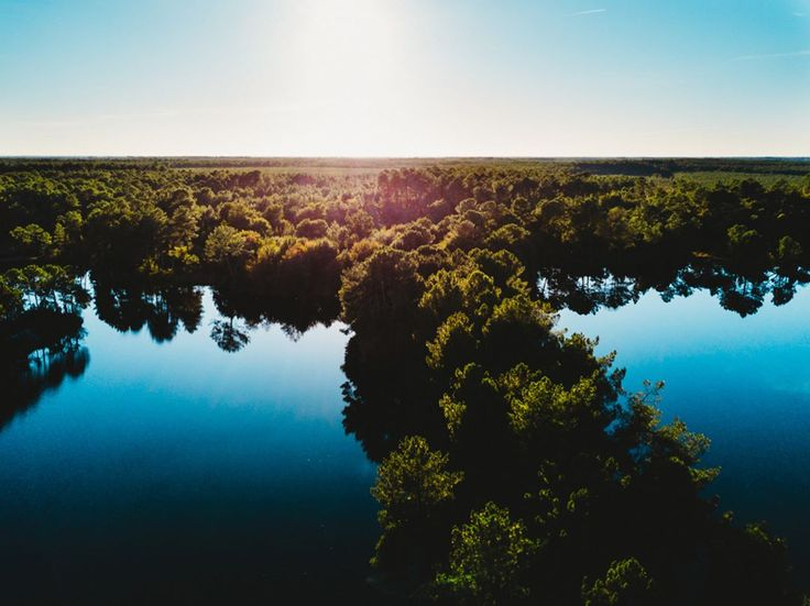 "139 mentions J'aime, 2 commentaires - DEFTOM (@deftom_filmaker) sur Instagram: ""Trees are floating 🤡 . . . . #dronegear #aerialphotography #gofly #godive #drone #dji #mavicpro…"""