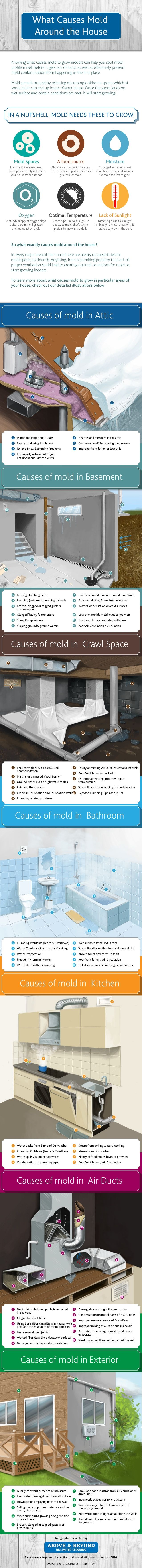 Causes of mold in Air Ducts Causes of mold in Exterior Causes of mold in Bathroom Causes of mold in Kitchen Bare earth floo...