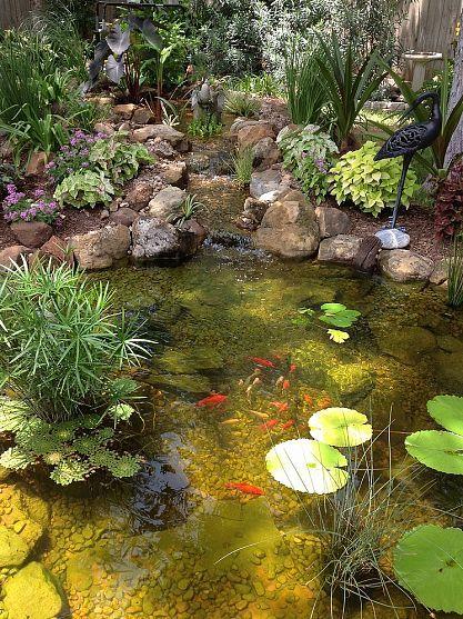 Charming backyard water garden in Richmond, TX features a constructed wetlands filter that adds an additional waterfall.