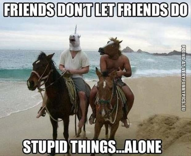 27 Perks Of Being A Girl With Guy Friends Funny Friend Memes Funny Best Friend Memes Funny Horse Memes