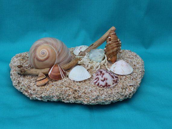 Seashell Centerpiece, Home Accent Centerpiece, Table Accent, Nautical Decor Centerpiece, Beach Decor, Seashells