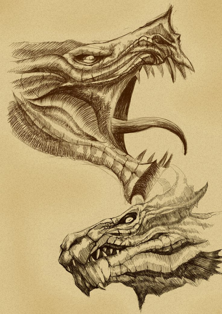 Image result for DRAGON HEAD IDEAS PERSPECTIVE