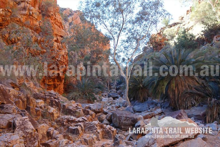 Inarlanga Pass. Section 9. © Explorers Australia Pty Ltd 2014