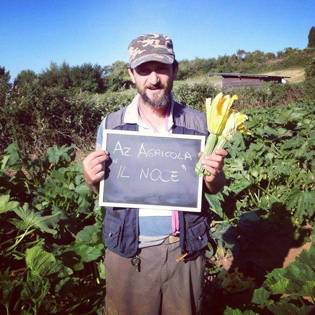 L'Azienda Agricola Il Noce: le verdure fresche di Squicity