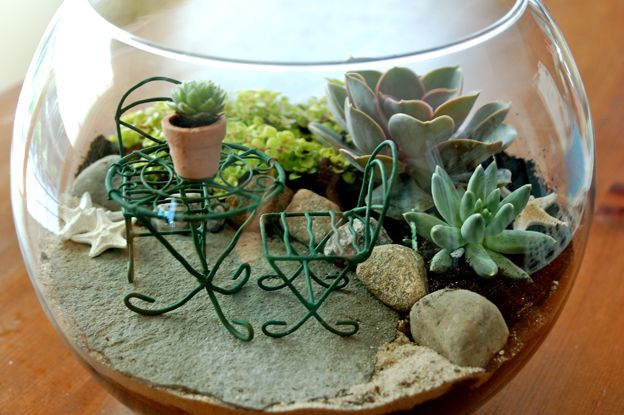 Projem Dergisi Bitkilerin trend evleri: Minyatür bahçeler