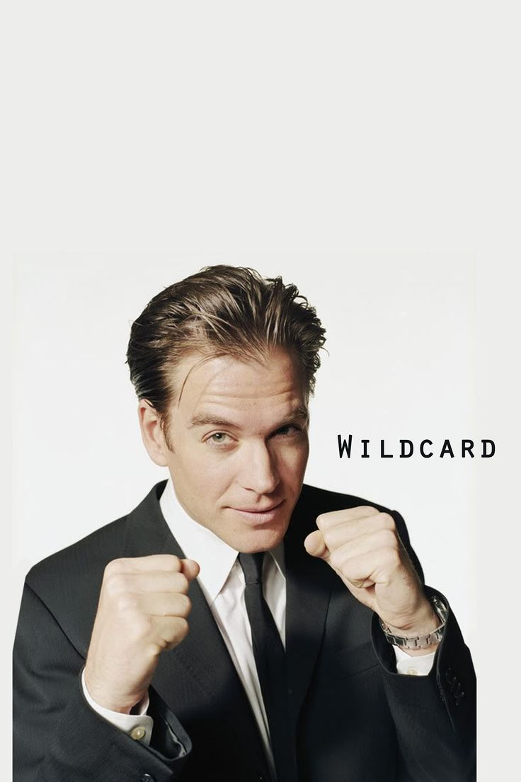 I am the Wildcard. I am the guy who looks at the reality in front of him and refuses to accept it.