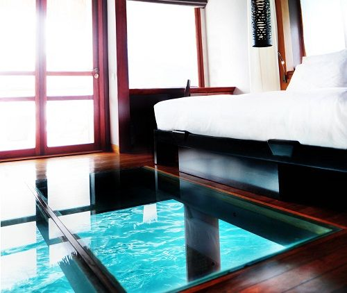 Amazing Glass Bottom Floors In The Overwater Bungalows At