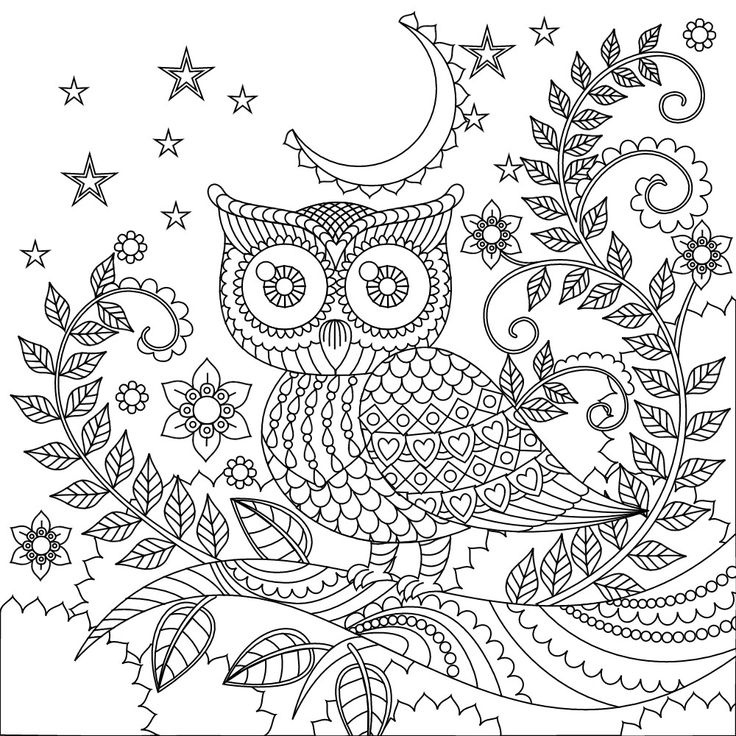 25 Basta Ideerna Om Owl Coloring Pages Pa Pinterest
