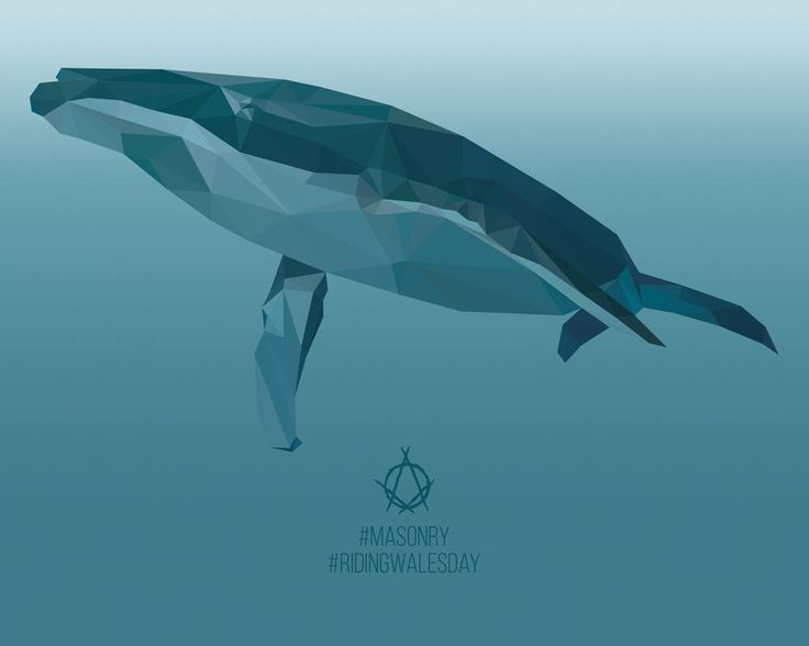 Eva Luna - #RidingWhalesDay 015 - illustration - whales - www.massoneriacreatica.com