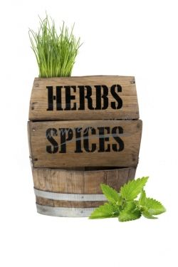 Herbs Spices Barrel