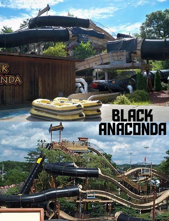 Black anaconda water coaster - photo#3