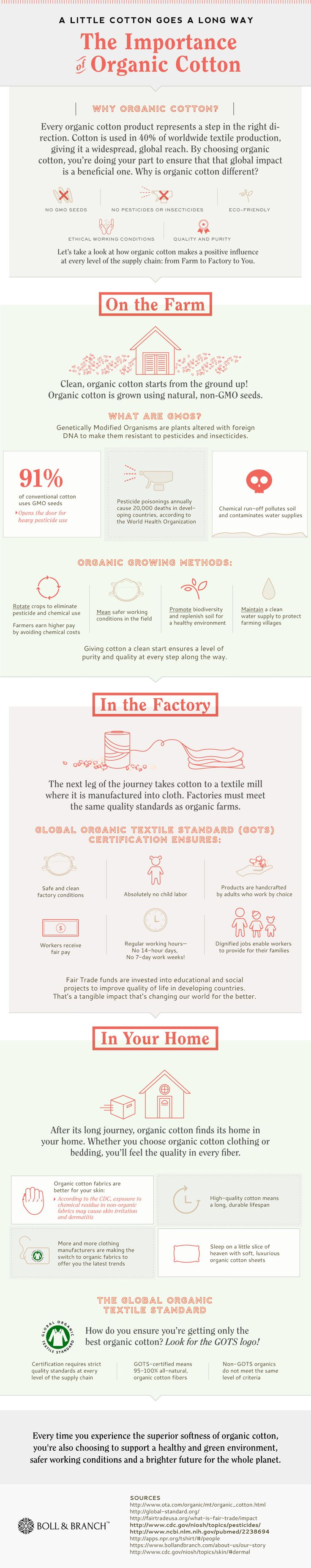 The-Important-of-Organic-Cotton-Infographic-Boll-and-Branch
