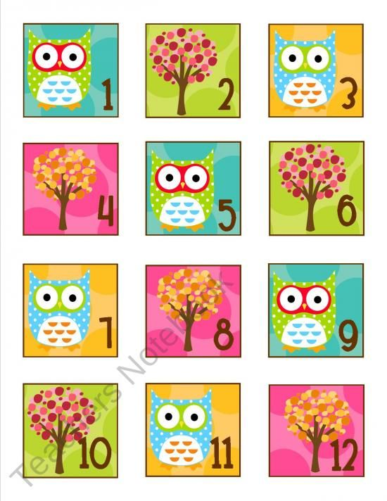 Owl Classroom Idea : Best images about owl theme classroom on pinterest