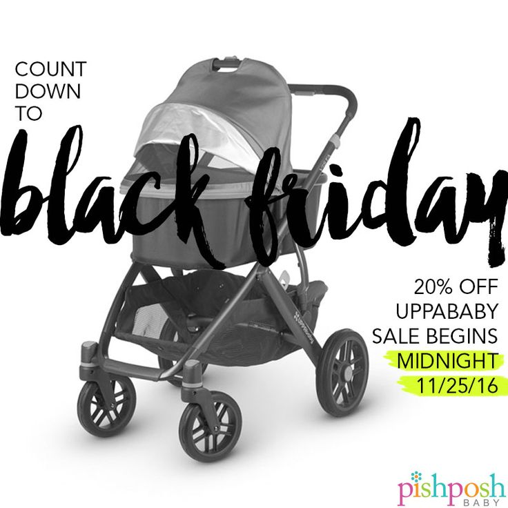 Alien Bees Black Friday Sale: 17 Best Images About Announcements & Giveaways On