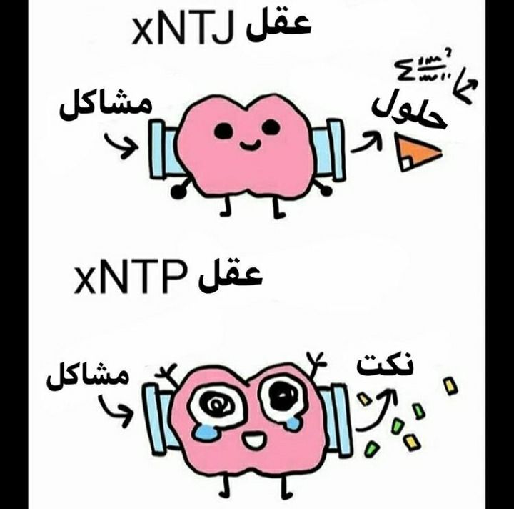 أنماط Mbti Funny Dating Quotes Interesting Quotes Mbti Character