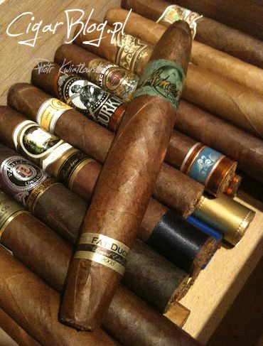 #cigaroftheday Nocnym markom przypominam recenzję cygara Amero Fat Duck Limited Edition 2008. Zapraszam do baaardzo obszernego tekstu na #cigarblog.pl #cigars #review http://bit.ly/1qtFftz
